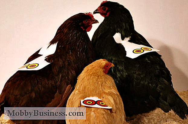 Snapshot Small Business: Chicken Armor