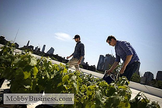 Small Business Snapshot: Rooftop Reds